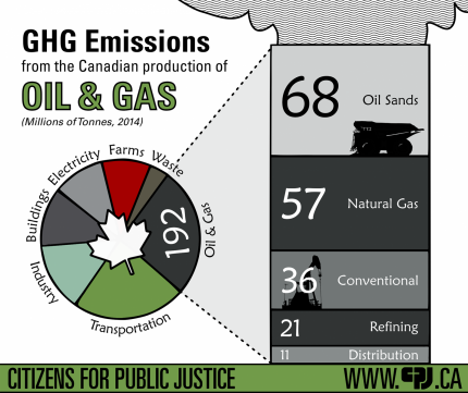 Infographic: Not all oil is created equal